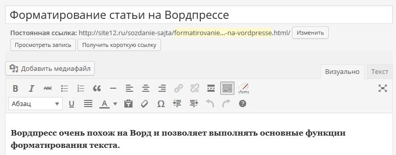 Василий Сенченко, Вордпресс, панель Визуально